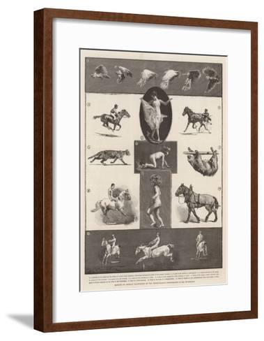 Motions of Animals Illustrated by the Instantaneous Photographs of Mr Muybridge-Walter Wilson-Framed Art Print