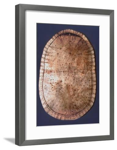 Pawnee Buckskin Chart of the Night Sky--Framed Art Print