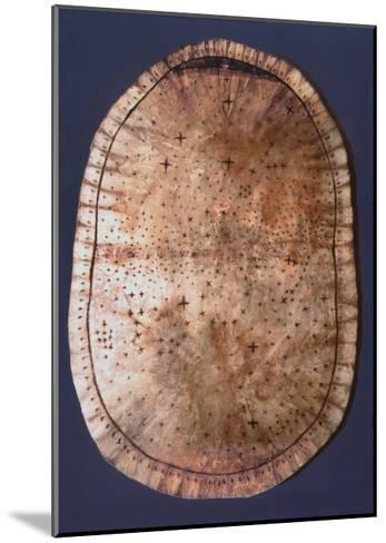 Pawnee Buckskin Chart of the Night Sky--Mounted Giclee Print