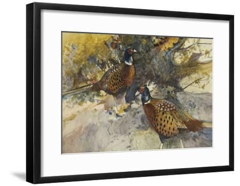 Cock Pheasants under a Beech Tree-Frank Southgate-Framed Art Print
