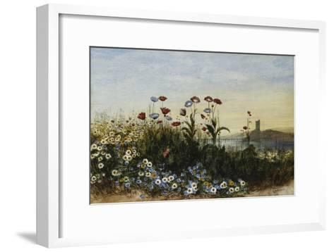 Ferry Carrig Castle, Co. Wexford, Seen Through a Bank of Wild Flowers-Andrew Nicholl-Framed Art Print