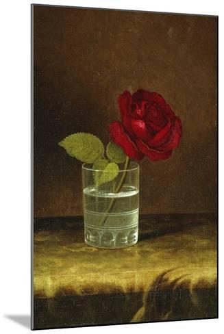 A Red Rose-Martin Johnson Heade-Mounted Giclee Print