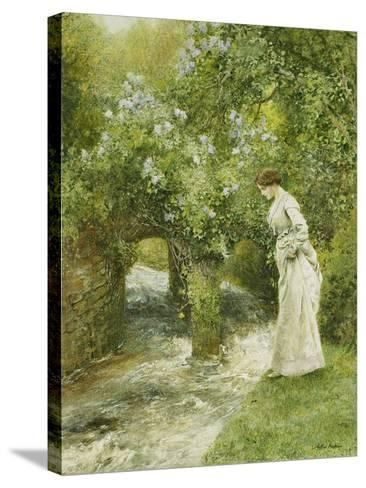 The Mill Stream in Spring-Arthur Hopkins-Stretched Canvas Print