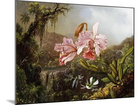Orchids and Hummingbirds in a Brazilian Jungle, C. 1871-72-Martin Johnson Heade-Mounted Giclee Print