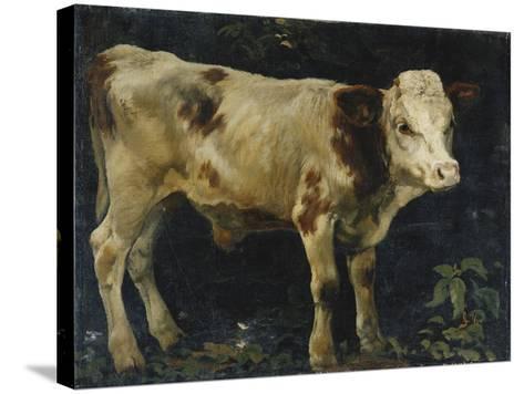 A Bull Calf, 1876-Christian Eriksen Skredsvig-Stretched Canvas Print