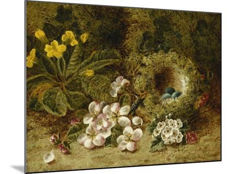 Apple Blossoms, a Primrose and Birds Nest on a Mossy Bank-Oliver Clare-Mounted Giclee Print