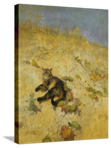 A Cat Basking in the Sun, 1884-Bruno Andreas Liljefors-Stretched Canvas Print
