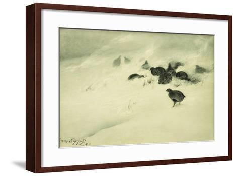 Grouse in a Snow Storm, 1890-Bruno Andreas Liljefors-Framed Art Print