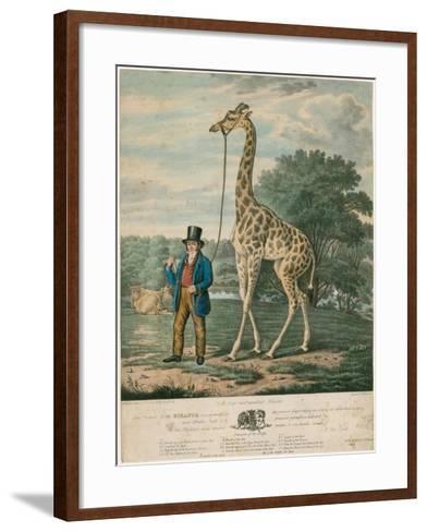 Portrait of the Giraffe, 1827-Abraham Bruiningh van Worrell-Framed Art Print