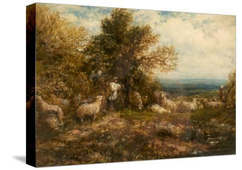 Sheep at Rest; Minding the Flock, C.1840-80-John Linnell-Stretched Canvas Print