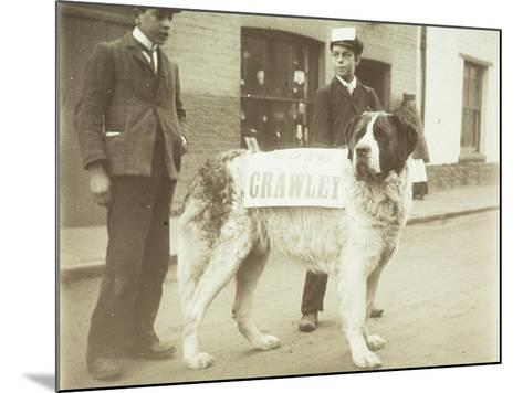 The Political Dog--Mounted Photographic Print