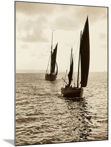 Newlyn Fishing Boats--Mounted Photographic Print