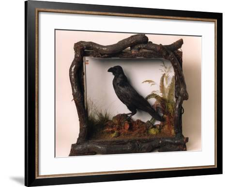 Grip, the Pet Raven of Charles Dickens--Framed Art Print