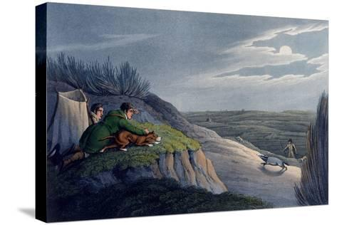 Badger Catching, 1820-Henry Thomas Alken-Stretched Canvas Print