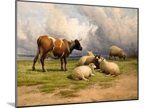 A Cow and Five Sheep, 1887-Thomas Sidney Cooper-Mounted Giclee Print