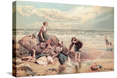 The Dead Sea-Bird-Myles Birket Foster-Stretched Canvas Print