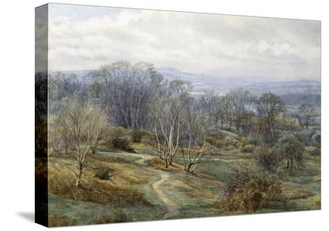 Hampstead Heath Looking Towards Harrow on the Hill, C.1880-Edith Martineau-Stretched Canvas Print