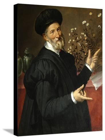 The Botanist-Bartolomeo Passarotti-Stretched Canvas Print