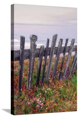 Sea Ranch Fence-Vincent James-Stretched Canvas Print