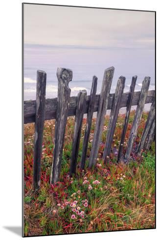 Sea Ranch Fence-Vincent James-Mounted Photographic Print