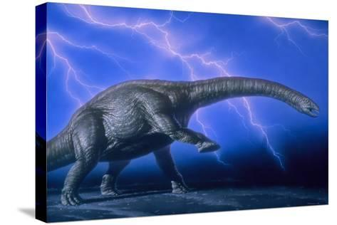 Apatosaurus Dinosaur-Joe Tucciarone-Stretched Canvas Print