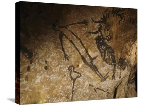 Stone-age Cave Paintings, Lascaux, France-Javier Trueba-Stretched Canvas Print