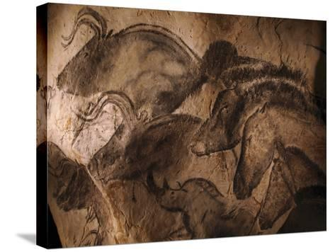 Stone-age Cave Paintings, Chauvet, France-Javier Trueba-Stretched Canvas Print