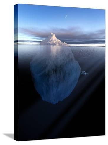 Iceberg, Artwork-Detlev Van Ravenswaay-Stretched Canvas Print