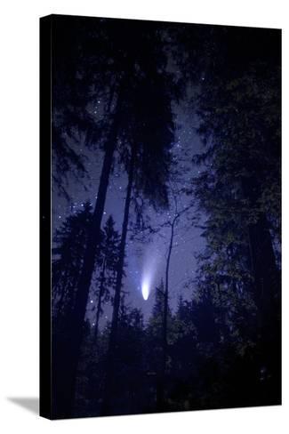 Comet Hale-Bopp-Detlev Van Ravenswaay-Stretched Canvas Print