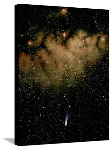 Halley's Comet-Detlev Van Ravenswaay-Stretched Canvas Print