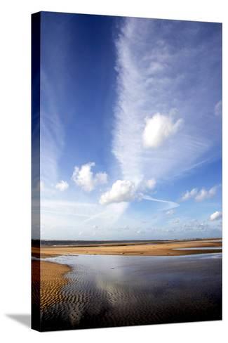 River Estuary-Dr. Keith Wheeler-Stretched Canvas Print