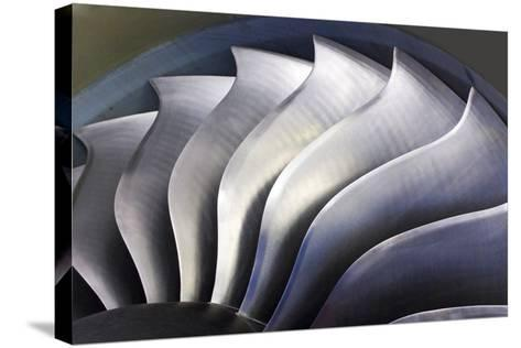 S-curve Fan Blades-Mark Williamson-Stretched Canvas Print