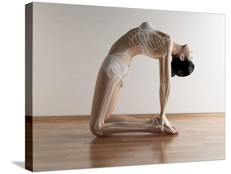 Yoga, Artwork-SCIEPRO-Stretched Canvas Print