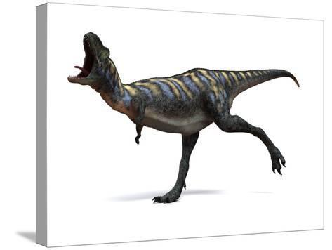 Aucasaurus Dinosaur, Artwork-SCIEPRO-Stretched Canvas Print