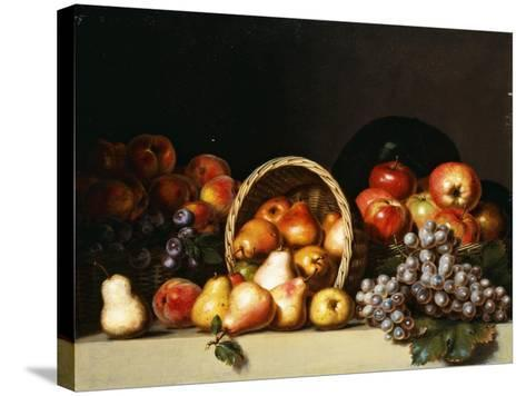 Apples, Pears, Plums and Grapes-Charles Bird King-Stretched Canvas Print