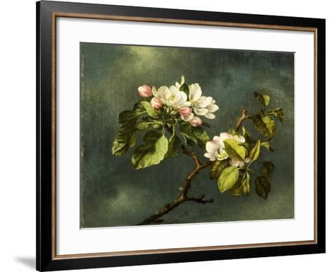 Apple Blossoms-Martin Johnson Heade-Framed Art Print