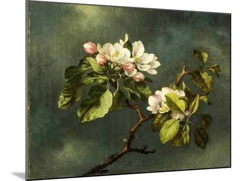 Apple Blossoms-Martin Johnson Heade-Mounted Giclee Print
