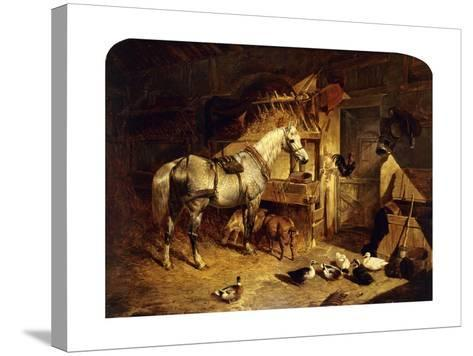 The Interior of a Stable with a Dapple Grey Horse, Ducks, Goats, and a Cockerel by a Manger-John Frederick Herring I-Stretched Canvas Print