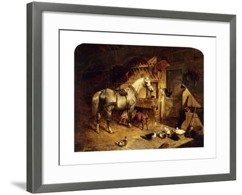 The Interior of a Stable with a Dapple Grey Horse, Ducks, Goats, and a Cockerel by a Manger-John Frederick Herring I-Framed Art Print