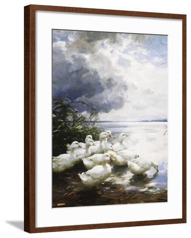 Ducks at the Lake's Edge-Alexander Koester-Framed Art Print
