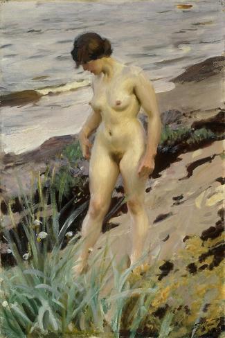 Sandhamn Study-Anders Leonard Zorn-Stretched Canvas Print