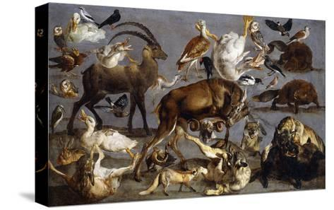 Studies of various Animals and Birds-Carl Borromaus Andreas		 Ruthart-Stretched Canvas Print