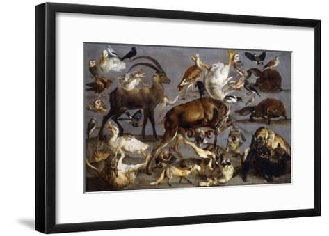 Studies of various Animals and Birds-Carl Borromaus Andreas		 Ruthart-Framed Art Print