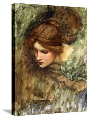 A Study for the Head of Venus-John William Waterhouse-Stretched Canvas Print