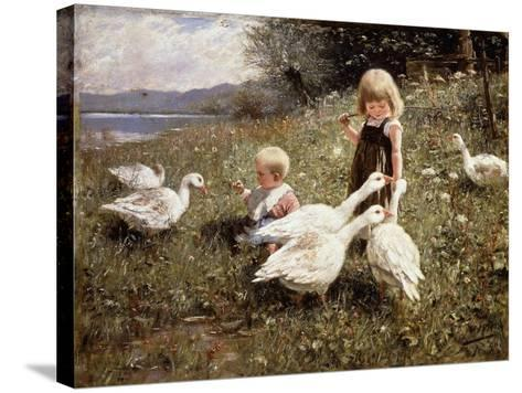 Feeding Geese-Alexander		 Koester-Stretched Canvas Print