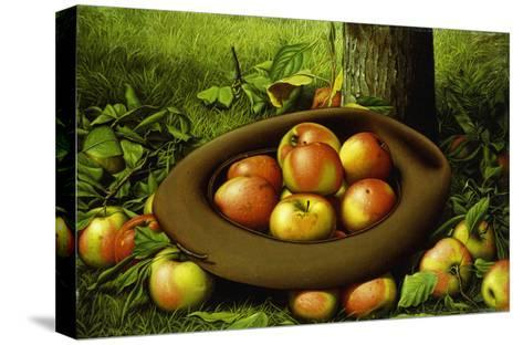 Apples in a Hat-Levi Wells Prentice-Stretched Canvas Print