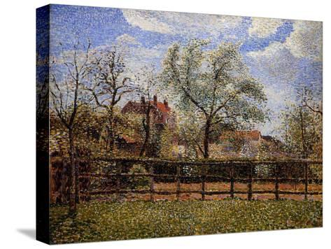 Pear Tree and Flowers in Eragny, Morning-Camille Pissarro-Stretched Canvas Print