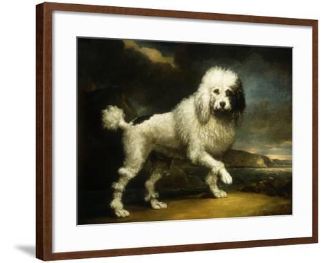 A Standard Poodle in a Coastal Landscape-James Northcote-Framed Art Print