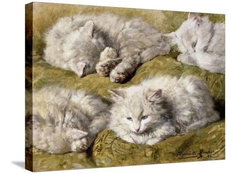 Studies of a Long-haired White Cat-Henriette Ronner-Knip-Stretched Canvas Print