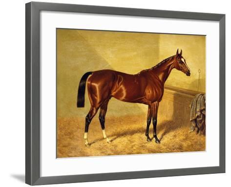 Orlando, a Bay Racehorse in a Loosebox-John Frederick Herring I-Framed Art Print